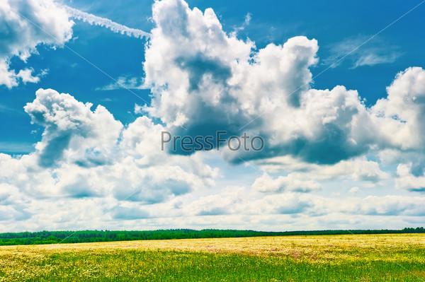 Красивые облака над полем