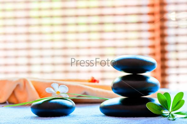 Черный камень и цветок в стиле дзен