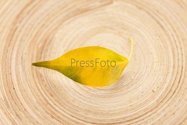 Желтый лист на деревянной текстуре