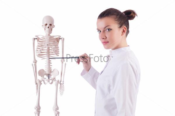 Доктор со скелетом на белом