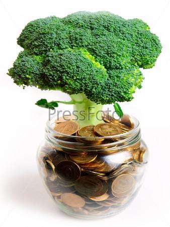 Фотография на тему Зеленое растение в стеклянной банке и российские монеты