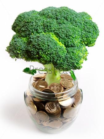 Зеленое растение в стеклянной банке и российские монеты