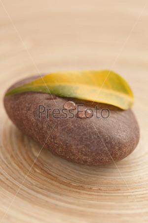 Желтый лист на камне