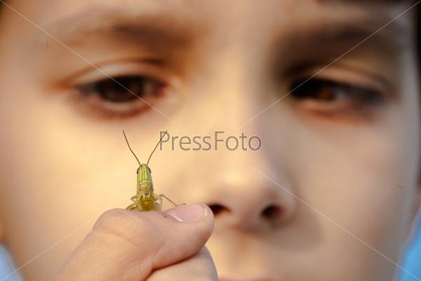 Мальчик играет с кузнечиком