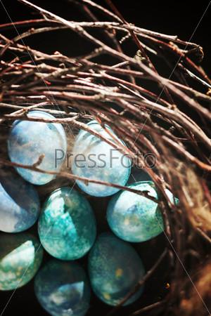 Синие яйца в гнезде