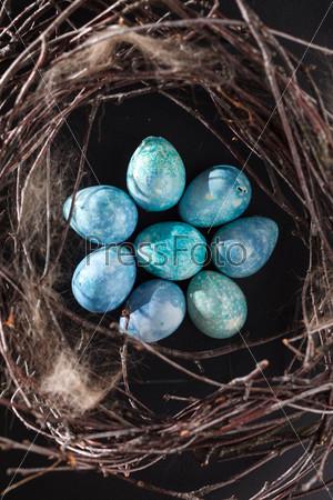 Фотография на тему Синие яйца в гнезде