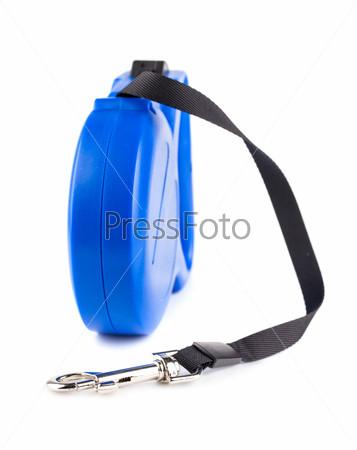 Синяя рулетка для собаки