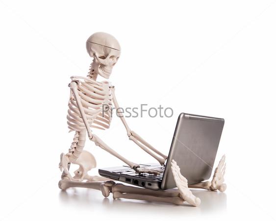 Скелет работает на ноутбуке