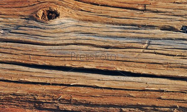 Фотография на тему Деревянная текстура