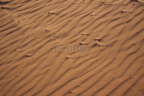 Фотография на тему Фактура песка