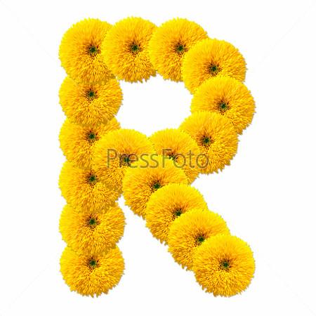 Фотография на тему Буква алфавита из цветов, изолированная на белом фоне