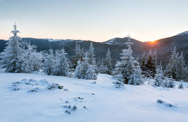 Фотография на тему Восход и зимний горный пейзаж с елями
