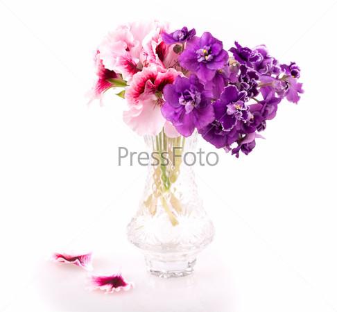Фиолетовая герань