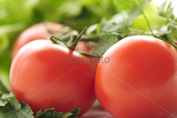 Фотография на тему Красные помидоры и петрушка