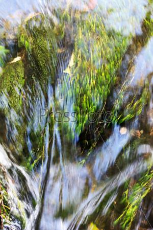 Фотография на тему Лесная река