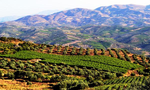 Вид на остров Крит, Греция