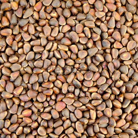 Кедровые орехи, текстура