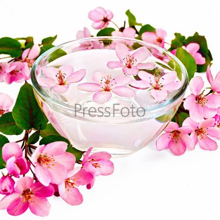 Яблоневый розовый цвет в чашке с водой