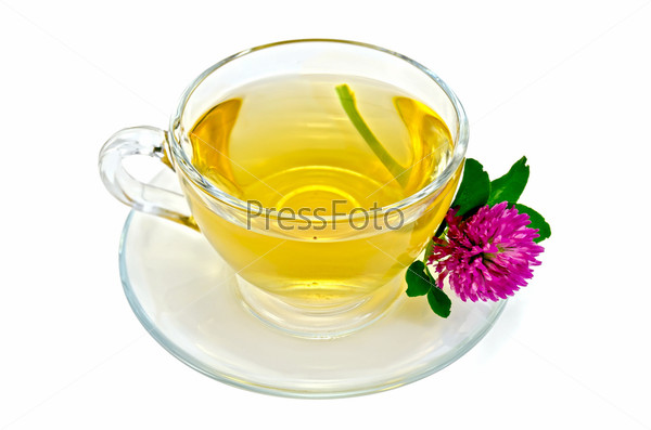 Травяной чай с одним цветком клевера