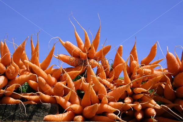 Морковь на фоне голубого неба