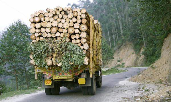 Грузовик, перевозивший древесину через холмы, Южная Индия