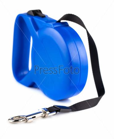 Фотография на тему Синяя рулетка-поводок для собаки