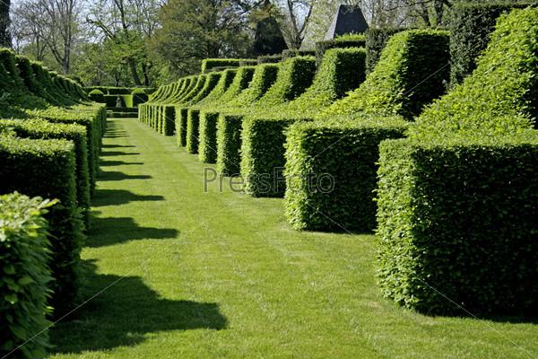 Фотография на тему Ряд скульптур из кустов в саду Эриньяк, Франция