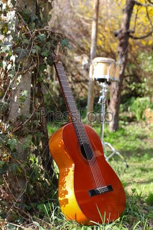 Гитара на природе