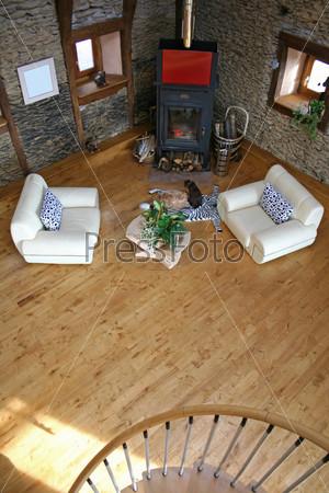 Фотография на тему Гостиная с камином и кошками на ковре