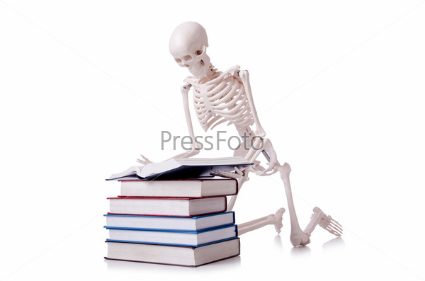 Фотография на тему Скелет читает книгу на белом фоне