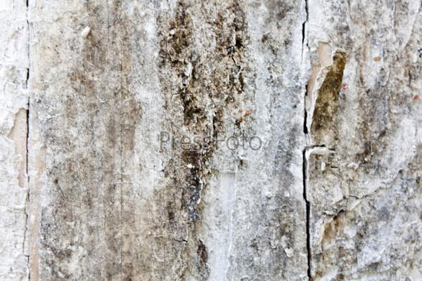 Старая деревянная доска