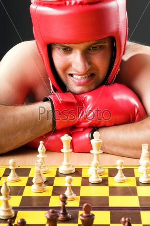 Фотография на тему Боксер испытывает затруднения, играя в шахматы