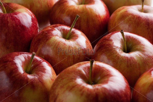 Фотография на тему Красные яблоки