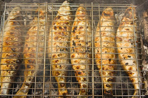 Фотография на тему Рыба на гриле