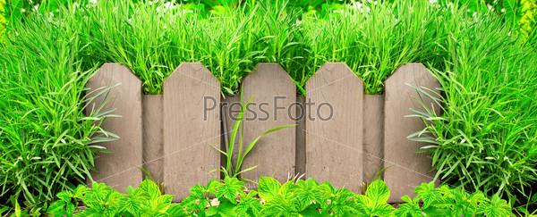 Деревянный забор и зеленая трава