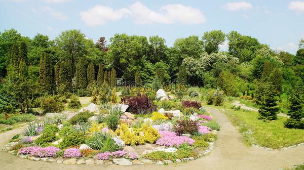 Фотография на тему Альпийский сад