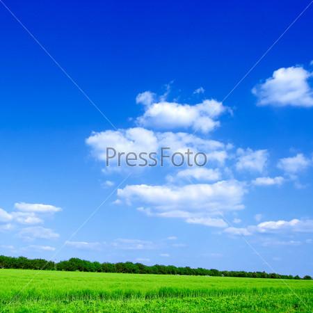 Фотография на тему Поле и облака