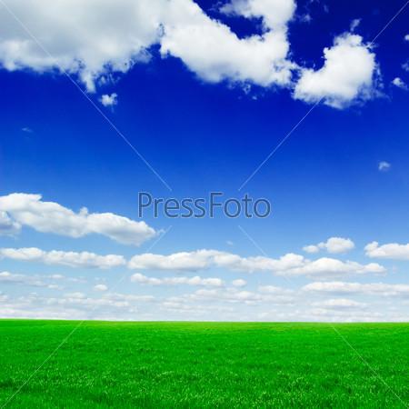 Фотография на тему Весеннее поле