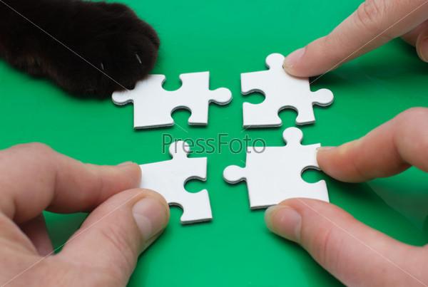 Три человека и кошка с пазлами