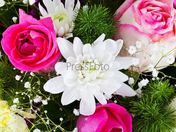 Белая хризантема и розовые розы
