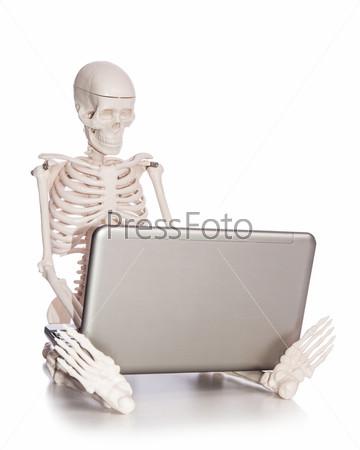 Фотография на тему Скелет работает на ноутбуке