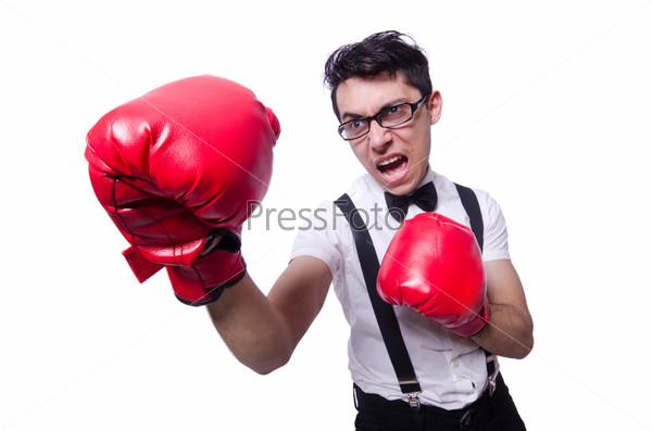 Смешной боксер, изолированный на белом фоне