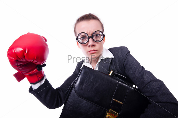 Фотография на тему Смешной боксер, изолированный на белом