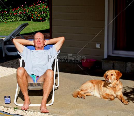 Солнце и собака