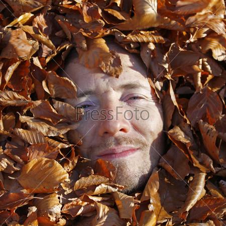 Фотография на тему Кровать из листьев