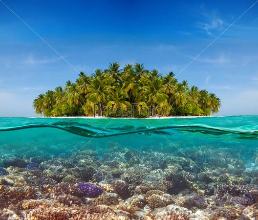 Коралловые рифы и остров