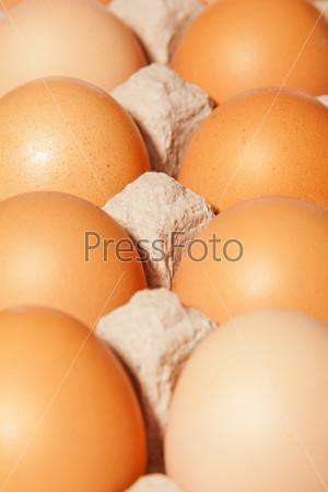 Яйцо в коробке крупным планом