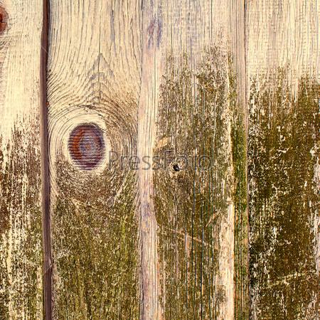 Старые деревянные доски, покрытые зеленым мхом