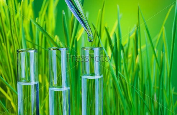 Чистый зеленый