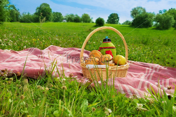 Праздничный пикник в парке